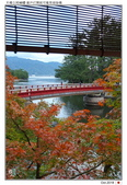 日本.海之京都~天橋立_Oct'18:AMNHDT10.jpg