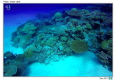 Diving in paradise, Palau_Dec'17:Palau30.jpg