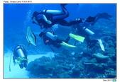 Diving in paradise, Palau_Dec'17:Palau34.jpg