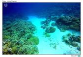 Diving in paradise, Palau_Dec'17:Palau58.jpg