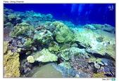 Diving in paradise, Palau_Dec'17:Palau47.jpg