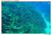 Diving in paradise, Palau_Dec'17:Palau64.jpg