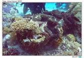 Diving in paradise, Palau_Dec'17:Palau67.jpg