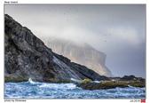 Bear Island, Norway_Jul'18:BI19.jpg