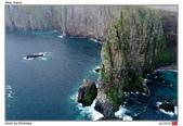 Bear Island, Norway_Jul'18:BI09.jpg