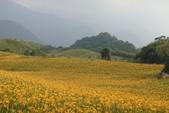 初秋造訪六十石山:DSC04943.JPG