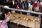Day 2, 奈良鹿公園‧世界遺產東大寺:DSC05311.JPG