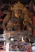 Day 2, 奈良鹿公園‧世界遺產東大寺:DSC05323.JPG