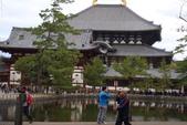 Day 2, 奈良鹿公園‧世界遺產東大寺:DSC05442.JPG