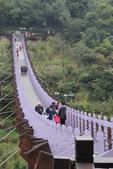 訪‧宛如一座巨龍蟠踞山中...內湖白石湖吊橋:IMG_1295.JPG