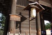 Day 2, 奈良鹿公園‧世界遺產東大寺:DSC05270.JPG
