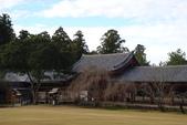 Day 2, 奈良鹿公園‧世界遺產東大寺:DSC05315.JPG