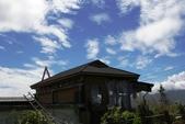天秤颱風過後‧六十石山金針花,依然綻放~~:IMG_7082.JPG