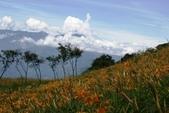 天秤颱風過後‧六十石山金針花,依然綻放~~:IMG_7065.JPG