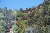 探訪納西族心目中的一座神山‧玉龍雪山~~:IMG_8720.JPG