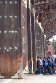 Day 2, 奈良鹿公園‧世界遺產東大寺:DSC05316.JPG