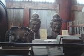 Day 2, 奈良鹿公園‧世界遺產東大寺:DSC05329.JPG