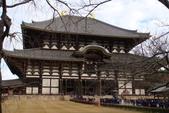 Day 2, 奈良鹿公園‧世界遺產東大寺:DSC05305.JPG