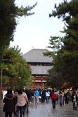 Day 2, 奈良鹿公園‧世界遺產東大寺:DSC05276.JPG