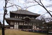 Day 2, 奈良鹿公園‧世界遺產東大寺:DSC05306.JPG