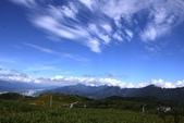 天秤颱風過後‧六十石山金針花,依然綻放~~:IMG_7008.JPG