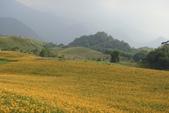 初秋造訪六十石山:DSC04948.JPG