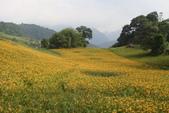 初秋造訪六十石山:DSC04930.JPG