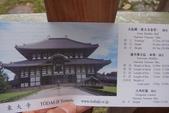 Day 2, 奈良鹿公園‧世界遺產東大寺:DSC05307.JPG