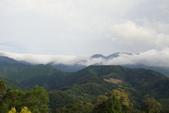偷得浮生半日閒-再訪綠光森林:DSC07460.JPG