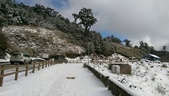 合歡山追雪趣:6971.jpg