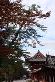 Day 2, 奈良鹿公園‧世界遺產東大寺:DSC05347.JPG