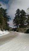 合歡山追雪趣:6962.jpg