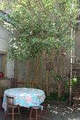 新埔探訪古宅-桂花園:DSC06335.JPG