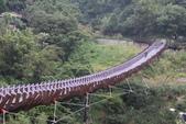 訪‧宛如一座巨龍蟠踞山中...內湖白石湖吊橋:IMG_1268.JPG