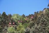 探訪納西族心目中的一座神山‧玉龍雪山~~:IMG_8724.JPG