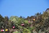 探訪納西族心目中的一座神山‧玉龍雪山~~:IMG_8728.JPG
