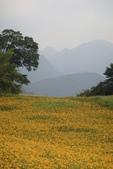 初秋造訪六十石山:DSC04933.JPG