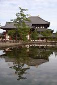 Day 2, 奈良鹿公園‧世界遺產東大寺:DSC05289.JPG