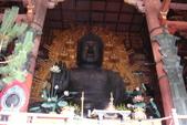 Day 2, 奈良鹿公園‧世界遺產東大寺:DSC05320.JPG