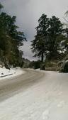 合歡山追雪趣:6963.jpg