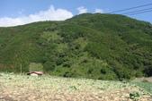 初訪武陵農場:DSC04110.JPG
