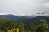 偷得浮生半日閒-再訪綠光森林:DSC07462.JPG