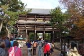 Day 2, 奈良鹿公園‧世界遺產東大寺:DSC05263.JPG