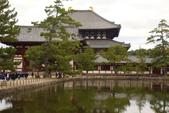 Day 2, 奈良鹿公園‧世界遺產東大寺:DSC05450.JPG