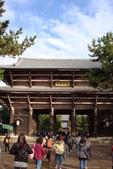 Day 2, 奈良鹿公園‧世界遺產東大寺:DSC05264.JPG