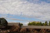 Day 2, 奈良鹿公園‧世界遺產東大寺:DSC05339.JPG
