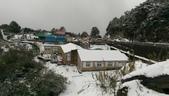 合歡山追雪趣:6952.jpg