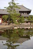Day 2, 奈良鹿公園‧世界遺產東大寺:DSC05292.JPG