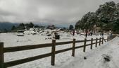 合歡山追雪趣:6961.jpg