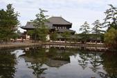 Day 2, 奈良鹿公園‧世界遺產東大寺:DSC05285.JPG